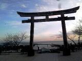 2011_01_05.jpg