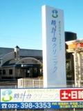 2011_01_06.jpg